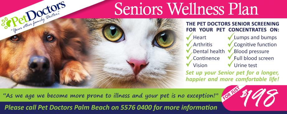 Seniors Wellness Program at Pet Doctors Palm Beach