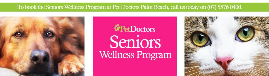 Seniors Wellness Program